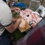 0071_PigDay2012